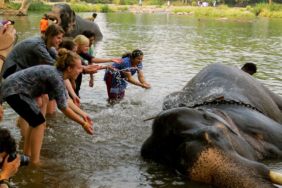 Kerala Group Tour