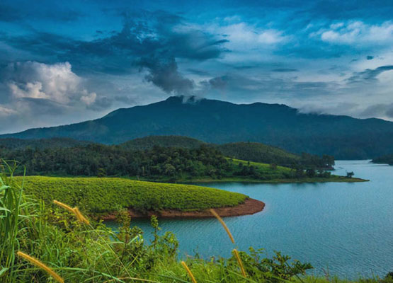 Ooty Wayanad Nature Tour