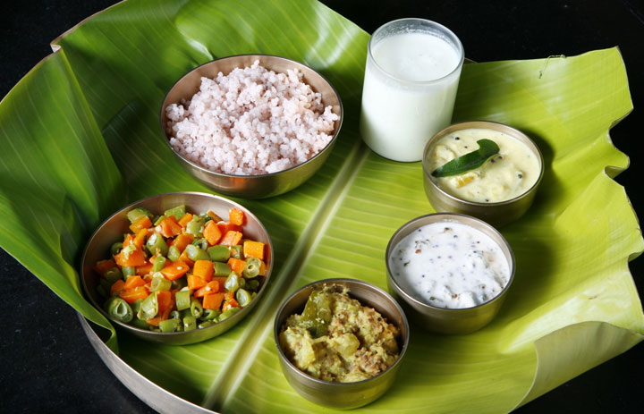 South India Food Tour